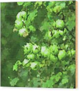 Green Apple On A Branch Wood Print