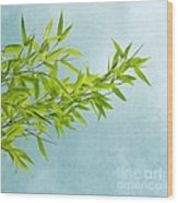 Green Bamboo Wood Print by Priska Wettstein