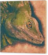 Green Basilisk Lizard Wood Print