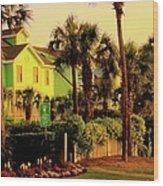 Green Beauty At Isle Of Palms Wood Print