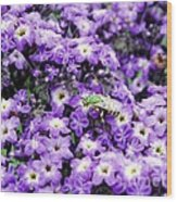 Green Bee Tiny Pollinator Wood Print