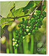 Green Berries Wood Print by Kaye Menner