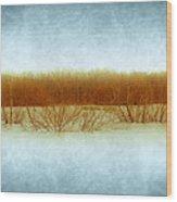 Green Bottom Swamp Wood Print