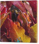 Green Bug Wood Print by Garry Gay
