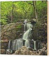 Green Canopy Above Laurel Falls Wood Print