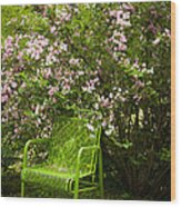 Green Chair Wood Print