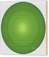 Green Circles Wood Print by Frank Tschakert