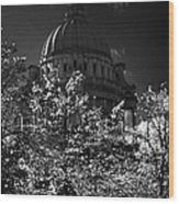 Green Copper Dome Of Belfast City Hall With Blue Cloudy Sky Behind Trees With Autumn Leaves Vertical Wood Print