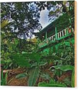 Green Costa Rica Paradise Wood Print by Andres Leon