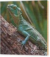 Green Crested Basilisk Wood Print