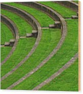 Green Curves And Steps Wood Print
