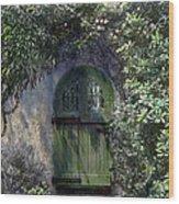 Green Door Wood Print by Terry Reynoldson