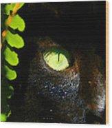 Green Eyed Black Cat Wood Print