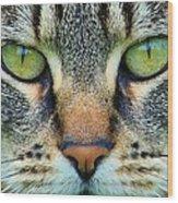 Green Eyez Wood Print
