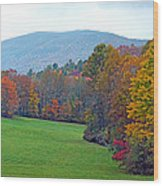 Green Field In The Fall Wood Print