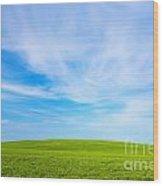 Green Field Landscape Wood Print