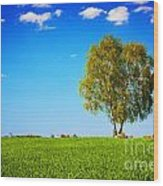 Green Field Landscape With A Single Tree Wood Print
