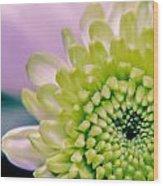 Green Flower2 Wood Print by Amr Miqdadi