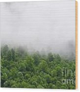 Green Forest With Clouds Wood Print