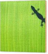 Green Gecko Leaf Wood Print