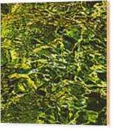 Green Gold Water Abstract. Feng Shui Wood Print by Jenny Rainbow