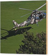Green Grass Landing  Wood Print