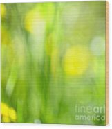Green Grass With Yellow Flowers Abstract Wood Print by Elena Elisseeva