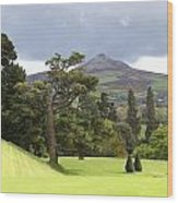 Green Green Garden And Mountain Wood Print