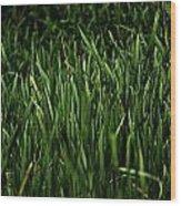 Green Green Grass ... Wood Print