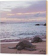 Green Hawaiian Sea Turtles At Sunset - Oahu Hawaii Wood Print by Brian Harig