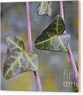 Green Hearts Beat Wood Print