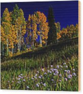 Green Hills Of Earth Wood Print