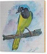 Green Jay Bird Texas Wood Print