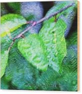 Green Leaf As A Painting Wood Print