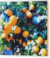Green Leaves And Mature Oranges On The Tree Wood Print