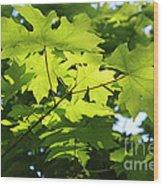 Green Leaves Canvas Wood Print