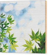 Green Leaves On Mottled Cloudy Sky Wood Print