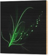 Green Lotus Wood Print