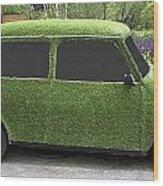 Green Mini Wood Print