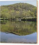 Green Mountain  Wood Print