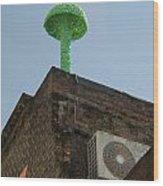 Green Mushroom By Nagel Wood Print