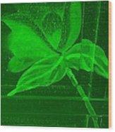 Green Negative Wood Flower Wood Print