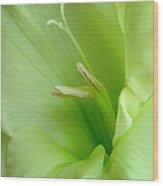 Green On Green Wood Print