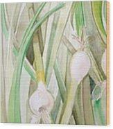 Green Onions Wood Print by Debi Starr