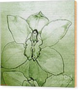 Green Orchid Wood Print by Patricia Howitt