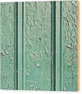 Green Painted Wood Wood Print