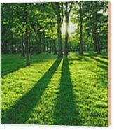 Green Park Wood Print by Elena Elisseeva
