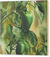 Green Peppers From Our Garden Wood Print