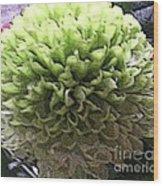Green Pom Pom Wood Print
