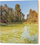 Green Pond And Tree Wood Print